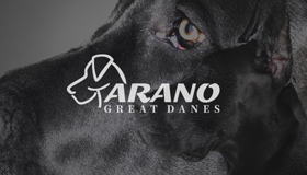 Breeder of great dane, Great dane dog logo